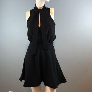 Elizabeth and James, black mini dress, Size 0.